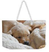Cuddling Labrador Retriever Puppy Weekender Tote Bag