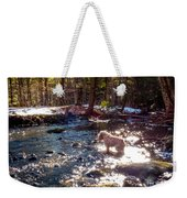 Curiosity In The Berkshires Weekender Tote Bag