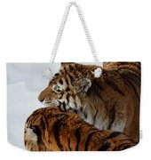 Curious Cats Weekender Tote Bag