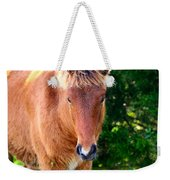 Curious Foal Weekender Tote Bag