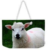 Curious Lamb Weekender Tote Bag