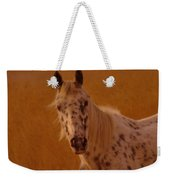 Curious Pony With Spots Weekender Tote Bag