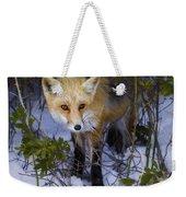 Curious Red Fox Weekender Tote Bag
