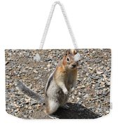 Curious Visitor Weekender Tote Bag