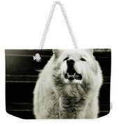Curious Wolf Breed Weekender Tote Bag