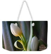Curly And White Weekender Tote Bag