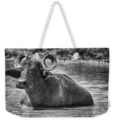 Curly Horns-black And White Weekender Tote Bag