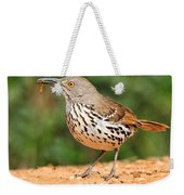 Curvedbill Thrasher With Grub Weekender Tote Bag