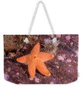 Cushion Winged Sea Star Weekender Tote Bag