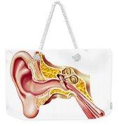 Cutaway Diagram Of Human Ear Weekender Tote Bag