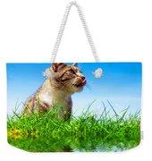 Cute Cat Outdoor Portait Weekender Tote Bag