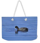 Cute Coot Weekender Tote Bag by Al Powell Photography USA