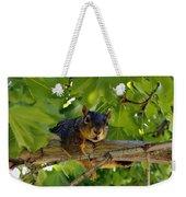 Cute Fuzzy Squirrel In Tree Weekender Tote Bag
