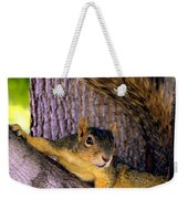 Cute Fuzzy Squirrel In Tree Near Garden Weekender Tote Bag