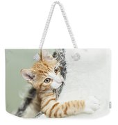 Cute Ginger Kitten In Igloo Weekender Tote Bag