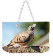 Cute Inca Dove Weekender Tote Bag by Robert Bales