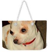 Cute N Sassy Weekender Tote Bag