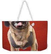 Cute Pug Dog In Vest And Top Hat Weekender Tote Bag