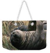 Cute Seal Weekender Tote Bag