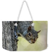Cute Squirrel  Dare Me Weekender Tote Bag