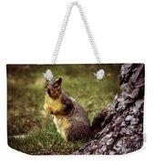 Cute Squirrel Weekender Tote Bag by Robert Bales