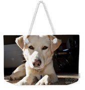 Cute White Dog Weekender Tote Bag