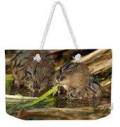 Cutest Water Rats Weekender Tote Bag
