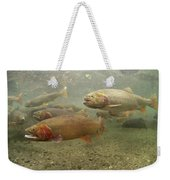 Cutthroat Trout In The Spring Idaho Weekender Tote Bag by Michael Quinton