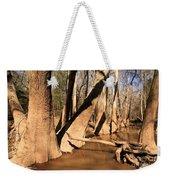 Cypress Hallway Weekender Tote Bag