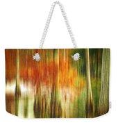 Cypress Pond Weekender Tote Bag by Scott Pellegrin
