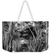 Cypress Tree Tunnel Point Reyes Weekender Tote Bag
