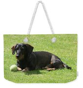 Dachshund Wants To Play  Weekender Tote Bag