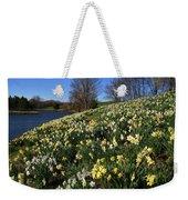 Daffodil Hill Weekender Tote Bag