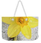 Daffodil In Spring Snow Weekender Tote Bag