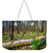 Daffodils And Birch Weekender Tote Bag