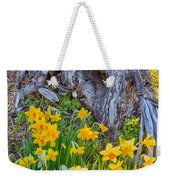 Daffodils And Sculpture Weekender Tote Bag