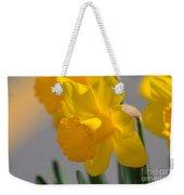 Daffodils In The Setting Sun Weekender Tote Bag