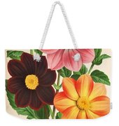 Dahlia Coccinea From A Begian Book Of Flora. Weekender Tote Bag