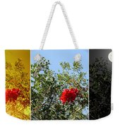 Daily Cycle - Triptych Weekender Tote Bag