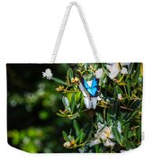 Daintree Monarch Butterfly Weekender Tote Bag