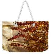 Dainty Branches - Warm Autumn Colors - Washington D C Facades Weekender Tote Bag