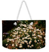 Daisy - Give Me Your Answer Do Weekender Tote Bag