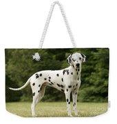 Dalmatian Dog Weekender Tote Bag