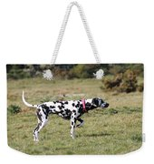 Dalmation Pretending To Be A Pointer Weekender Tote Bag