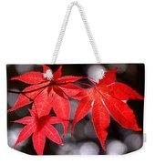 Dancing Japanese Maple Weekender Tote Bag