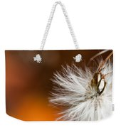 Dandelion Seed Head And Fall Color Background Weekender Tote Bag