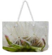 Dandelion Seed Head Macro IIi Weekender Tote Bag