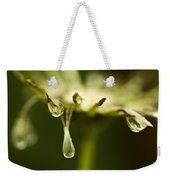 Dandelion Stub With Drop Weekender Tote Bag