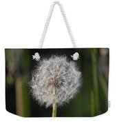 Dandelion With Abstract Grasses Weekender Tote Bag