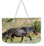 Dark And Wild Horse Weekender Tote Bag by Sabrina L Ryan